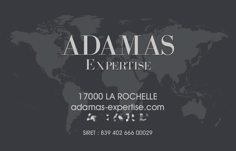 Carte de visite Adamas Expertise