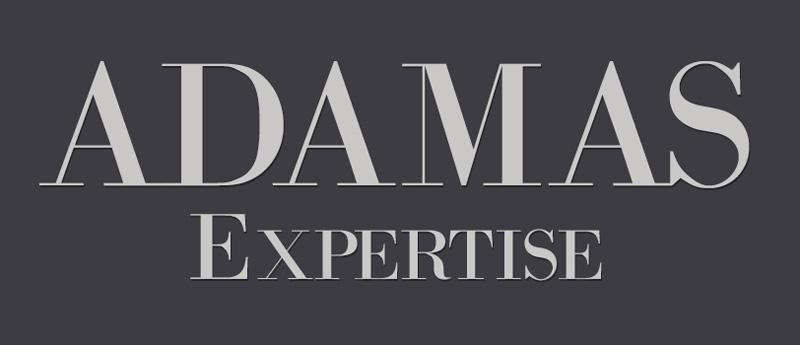 Logo Adamas Expertise